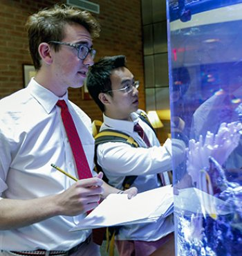 Exeter students study fish in an aquarium in Phelps Science Center.